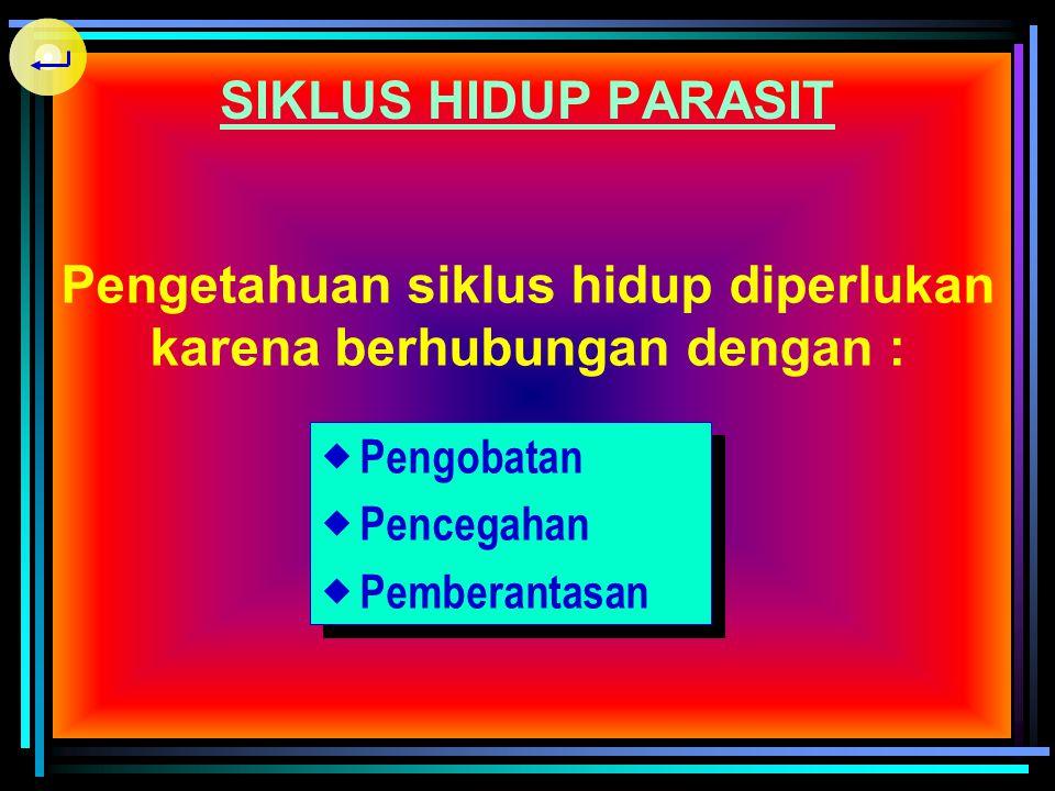 SIKLUS HIDUP PARASIT Sumber infeksi (pengandung parasit) Tempat/cara masuknya parasit ke dalam tubuh hospes Perubahan parasit yang terjadi di dalam tu