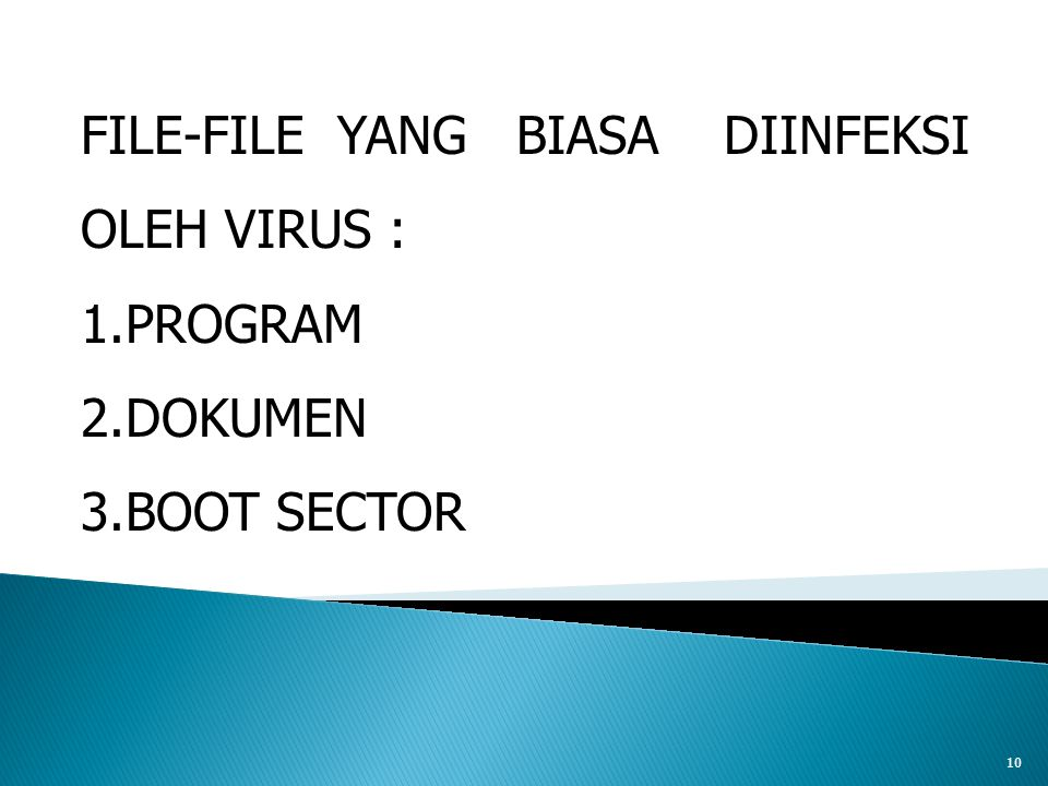 10 FILE-FILE YANG BIASA DIINFEKSI OLEH VIRUS : 1.PROGRAM 2.DOKUMEN 3.BOOT SECTOR