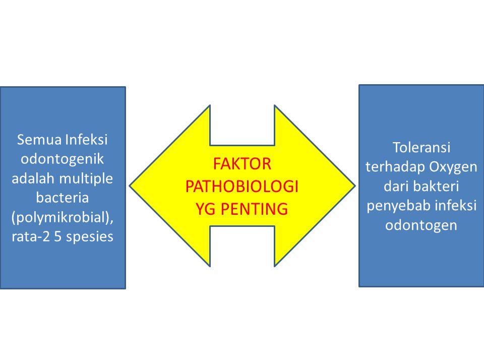 FAKTOR PATHOBIOLOGI YG PENTING Toleransi terhadap Oxygen dari bakteri penyebab infeksi odontogen Semua Infeksi odontogenik adalah multiple bacteria (p