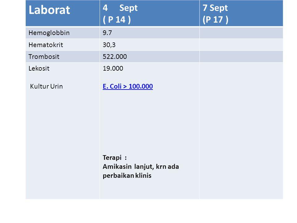 Laborat 4Sept ( P 14 ) 7 Sept (P 17 ) Hemoglobbin9.7 Hematokrit30,3 Trombosit522.000 Lekosit Kultur Urin 19.000 E.