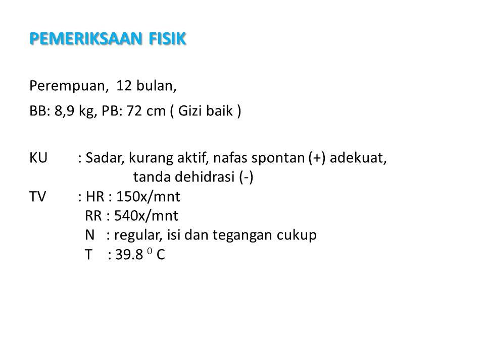 4 Perempuan, 12 bulan, BB: 8,9 kg, PB: 72 cm ( Gizi baik ) KU : Sadar, kurang aktif, nafas spontan (+) adekuat, tanda dehidrasi (-) TV : HR : 150x/mnt RR : 540x/mnt N : regular, isi dan tegangan cukup T : 39.8 0 C PEMERIKSAAN FISIK PEMERIKSAAN FISIK (22 Agustus 2010)