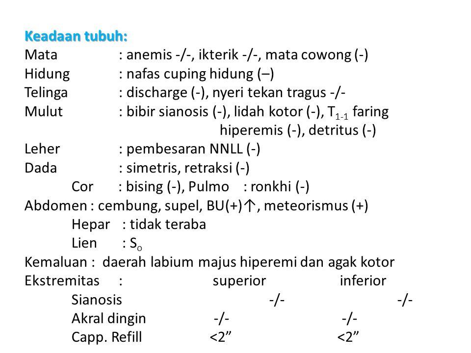 5 Keadaan tubuh: Mata: anemis -/-, ikterik -/-, mata cowong (-) Hidung : nafas cuping hidung (–) Telinga : discharge (-), nyeri tekan tragus -/- Mulut : bibir sianosis (-), lidah kotor (-), T 1-1 faring hiperemis (-), detritus (-) Leher : pembesaran NNLL (-) Dada : simetris, retraksi (-) Cor : bising (-), Pulmo : ronkhi (-) Abdomen : cembung, supel, BU(+)↑, meteorismus (+) Hepar : tidak teraba Lien : S o Kemaluan : daerah labium majus hiperemi dan agak kotor Ekstremitas : superior inferior Sianosis -/- -/- Akral dingin -/- -/- Capp.