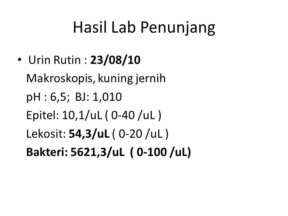 Hasil Lab Penunjang Urin Rutin : 23/08/10 Makroskopis, kuning jernih pH : 6,5; BJ: 1,010 Epitel: 10,1/uL ( 0-40 /uL ) Lekosit: 54,3/uL ( 0-20 /uL ) Bakteri: 5621,3/uL ( 0-100 /uL)