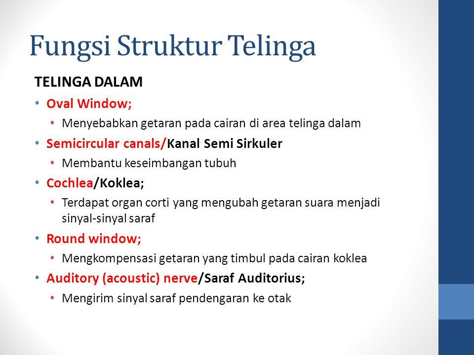 Fungsi Struktur Telinga