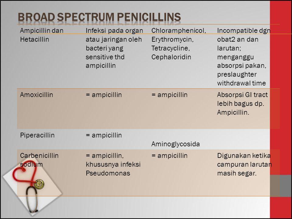 Ampicillin dan Hetacillin Infeksi pada organ atau jaringan oleh bacteri yang sensitive thd ampicillin Chloramphenicol, Erythromycin, Tetracycline, Cep