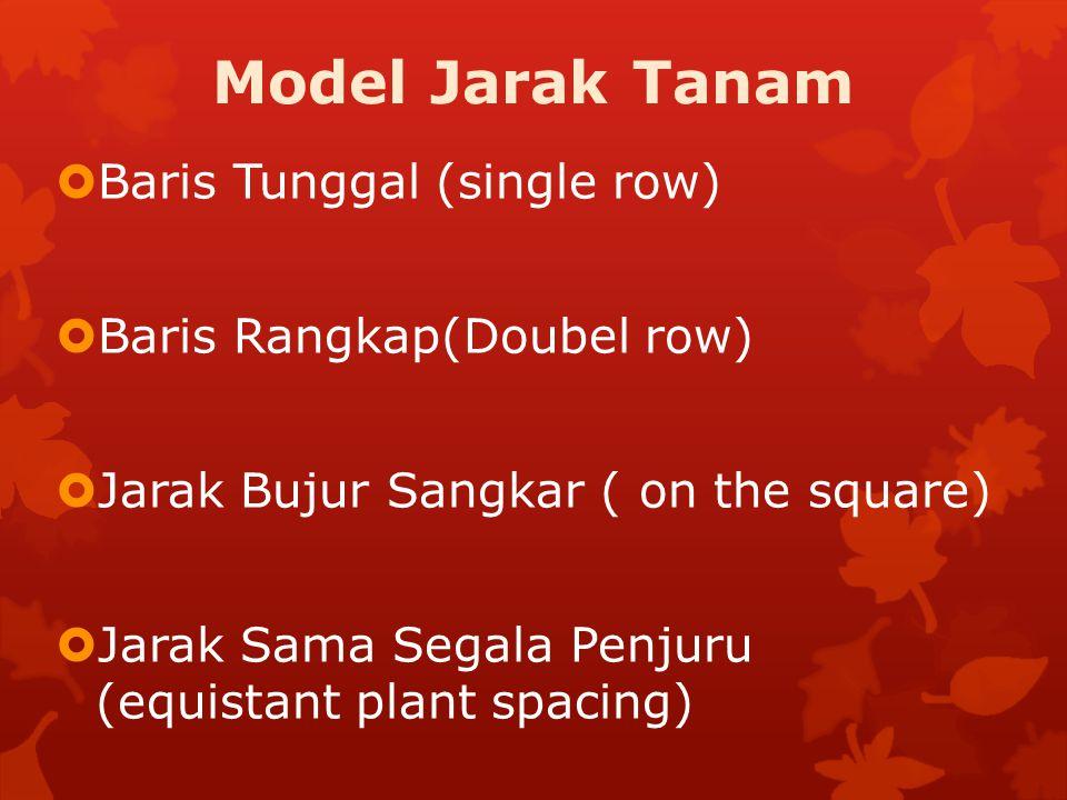 Model Jarak Tanam  Baris Tunggal (single row)  Baris Rangkap(Doubel row)  Jarak Bujur Sangkar ( on the square)  Jarak Sama Segala Penjuru (equista
