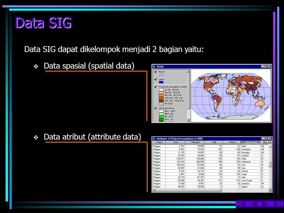 Data SIG   Data atribut (attribute data) Data SIG dapat dikelompok menjadi 2 bagian yaitu:   Data spasial (spatial data)