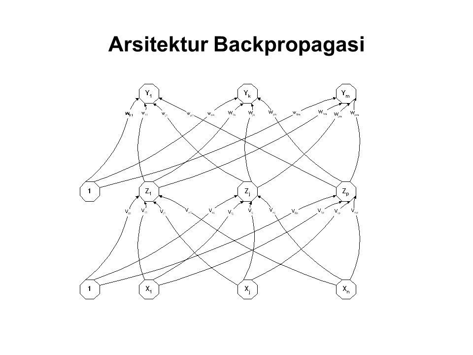 Arsitektur Backpropagasi