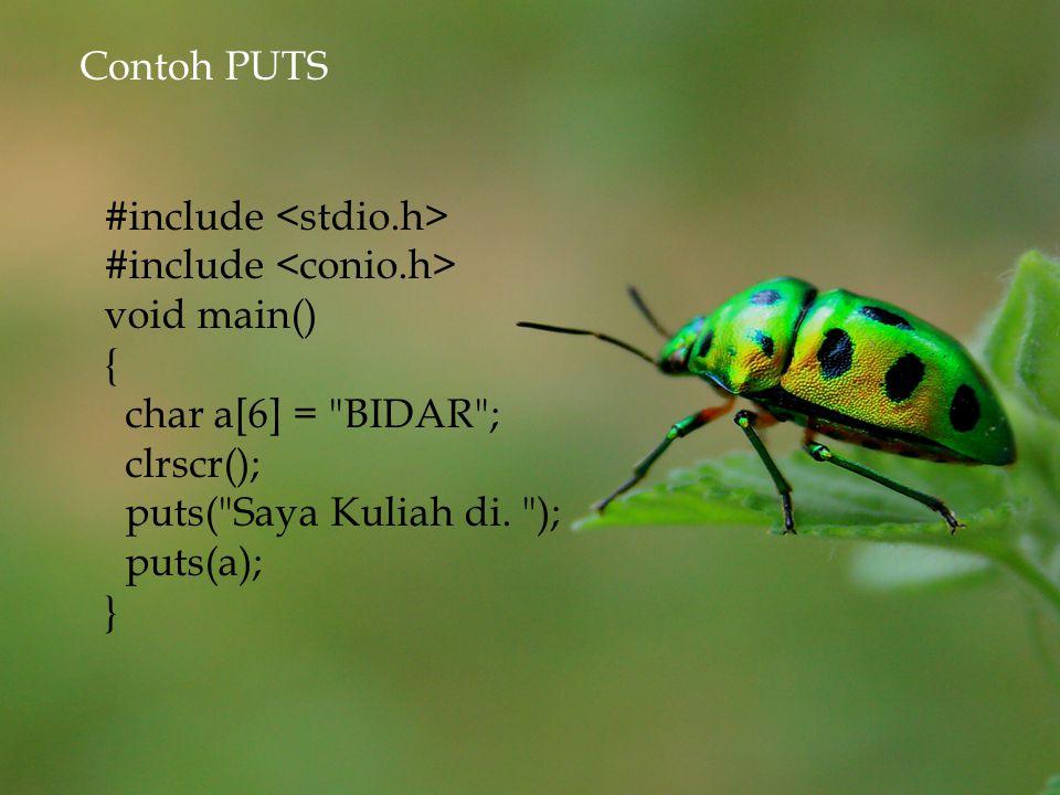  Perintah putchar() digunakan untuk menampilkan sebuah karakter kelayar.