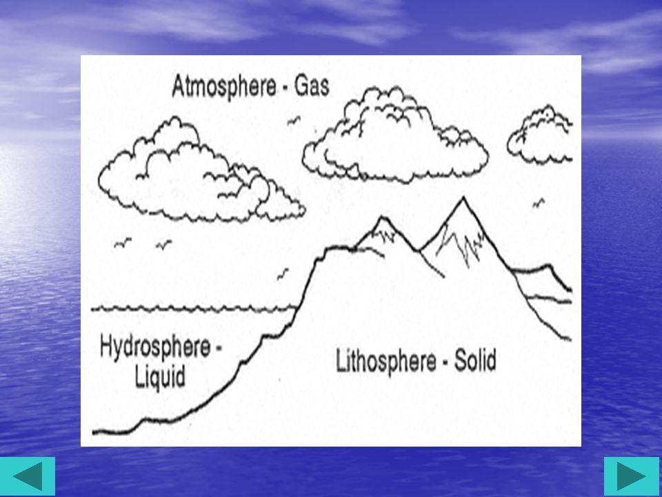 Konsep Pola Pola berkaitan dengan keadaan lingkungannya.