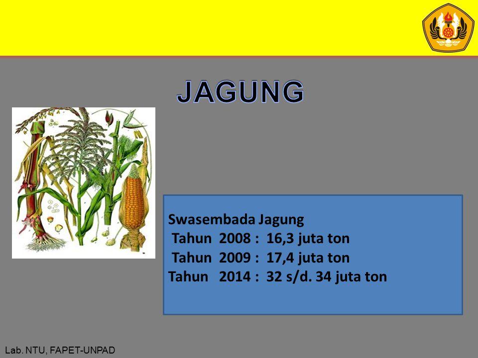 Lab. NTU, FAPET-UNPAD Swasembada Jagung Tahun 2008 : 16,3 juta ton Tahun 2009 : 17,4 juta ton Tahun 2014 : 32 s/d. 34 juta ton