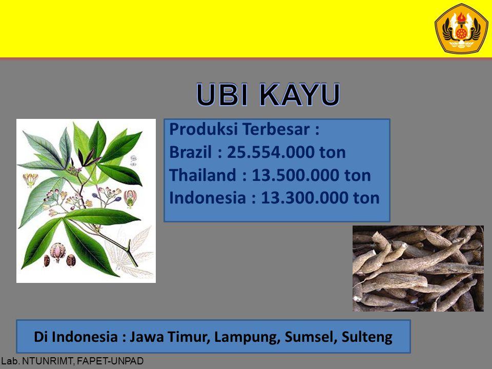 Lab. NTUNRIMT, FAPET-UNPAD Produksi Terbesar : Brazil : 25.554.000 ton Thailand : 13.500.000 ton Indonesia : 13.300.000 ton Di Indonesia : Jawa Timur,