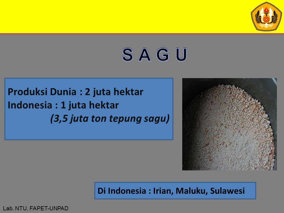 Lab. NTU, FAPET-UNPAD Produksi Dunia : 2 juta hektar Indonesia : 1 juta hektar (3,5 juta ton tepung sagu) Di Indonesia : Irian, Maluku, Sulawesi