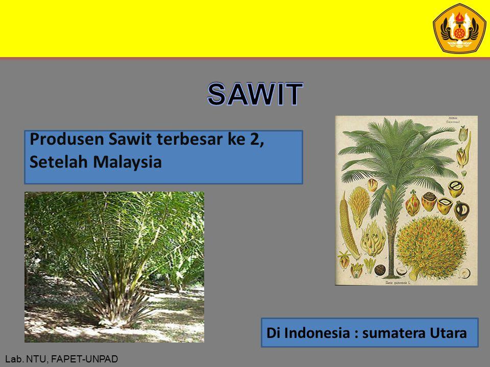 Lab. NTU, FAPET-UNPAD Produsen Sawit terbesar ke 2, Setelah Malaysia Di Indonesia : sumatera Utara
