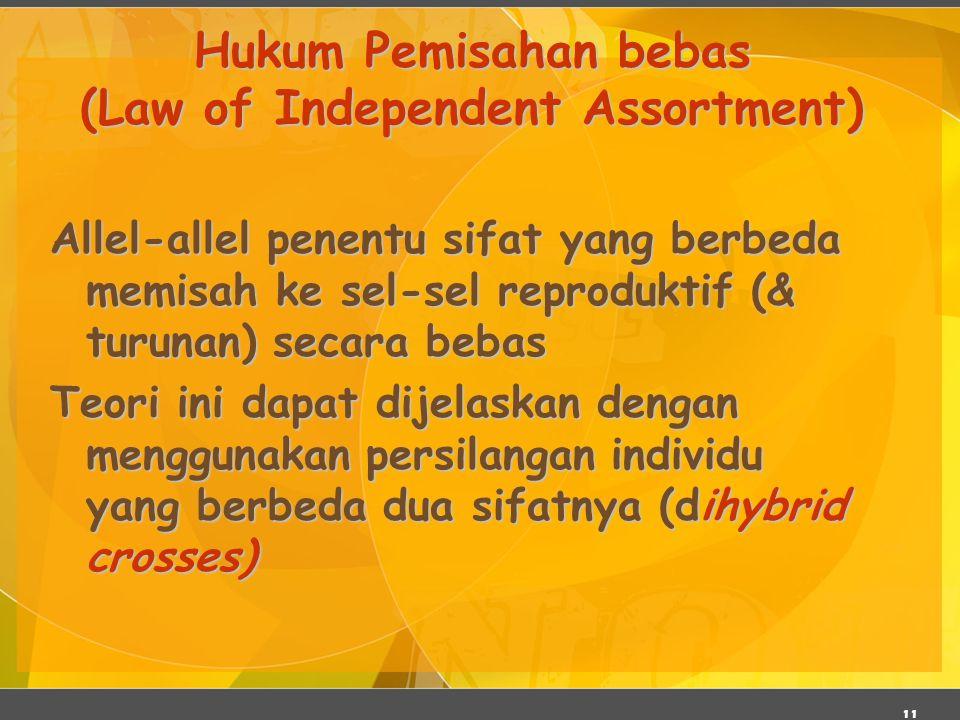 11 Hukum Pemisahan bebas (Law of Independent Assortment) Allel-allel penentu sifat yang berbeda memisah ke sel-sel reproduktif (& turunan) secara beba