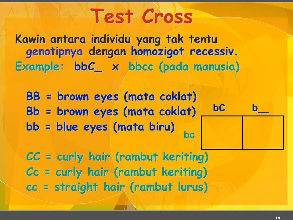 19 Test Cross Kawin antara individu yang tak tentu genotipnya dengan homozigot recessiv. Example: bbC_ x bbcc (pada manusia) BB = brown eyes (mata cok