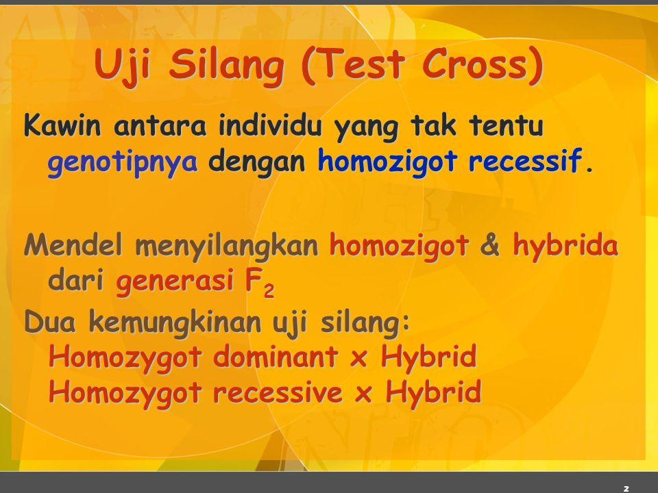 2 Uji Silang (Test Cross) Kawin antara individu yang tak tentu genotipnya dengan homozigot recessif. Mendel menyilangkan homozigot & hybrida dari gene