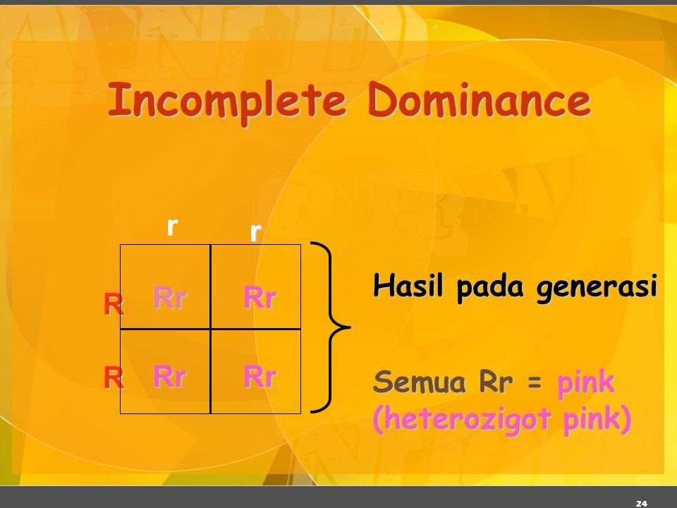 24 Incomplete Dominance RrRrRrRr R Rr Semua Rr = pink (heterozigot pink) Hasil pada generasi r