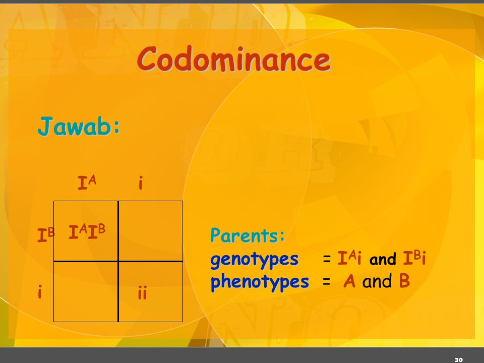 30 Codominance Jawab: IAIBIAIB ii Parents: genotypes genotypes = I A i and I B i phenotypes phenotypes = A and B IBIB IAIA i i