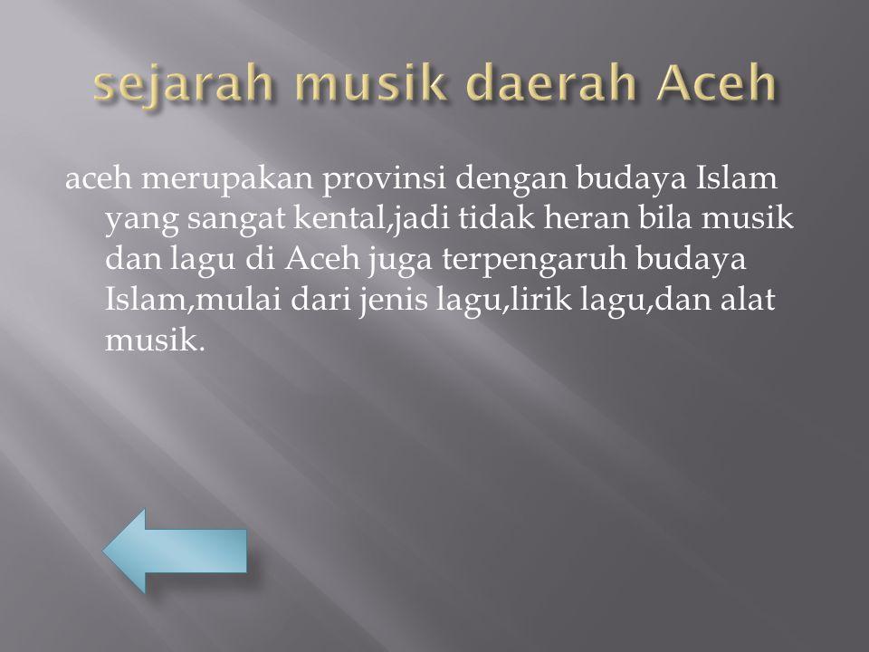 aceh merupakan provinsi dengan budaya Islam yang sangat kental,jadi tidak heran bila musik dan lagu di Aceh juga terpengaruh budaya Islam,mulai dari jenis lagu,lirik lagu,dan alat musik.