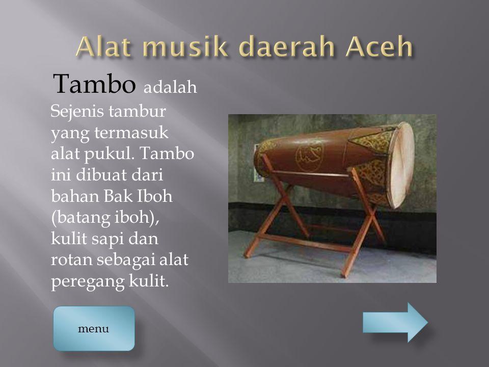 Tambo adalah Sejenis tambur yang termasuk alat pukul. Tambo ini dibuat dari bahan Bak Iboh (batang iboh), kulit sapi dan rotan sebagai alat peregang k