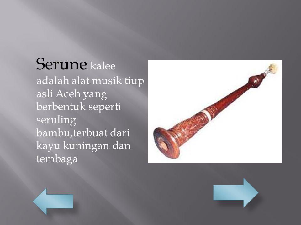 Rapai merupakan sejenis instrumen musik pukul (perkusi) yang berfungsi pengiring kesenian tradisional.