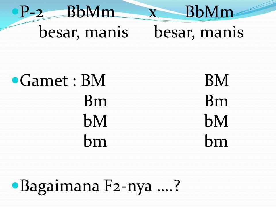 Tanaman mangga berbuah besar (BB) rasa asam (mm) di silangkan dengan tanaman mangga berbuah kecil (bb) dan rasa manis (MM), bagai manakah perbandingan keturunanya sampai F- 2 ??.