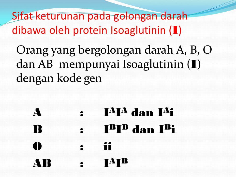 Golongan darah seseorang ditentukan oleh sejenis protein yang ada pada darah disebut Aglutinogen dan Aglutinin.