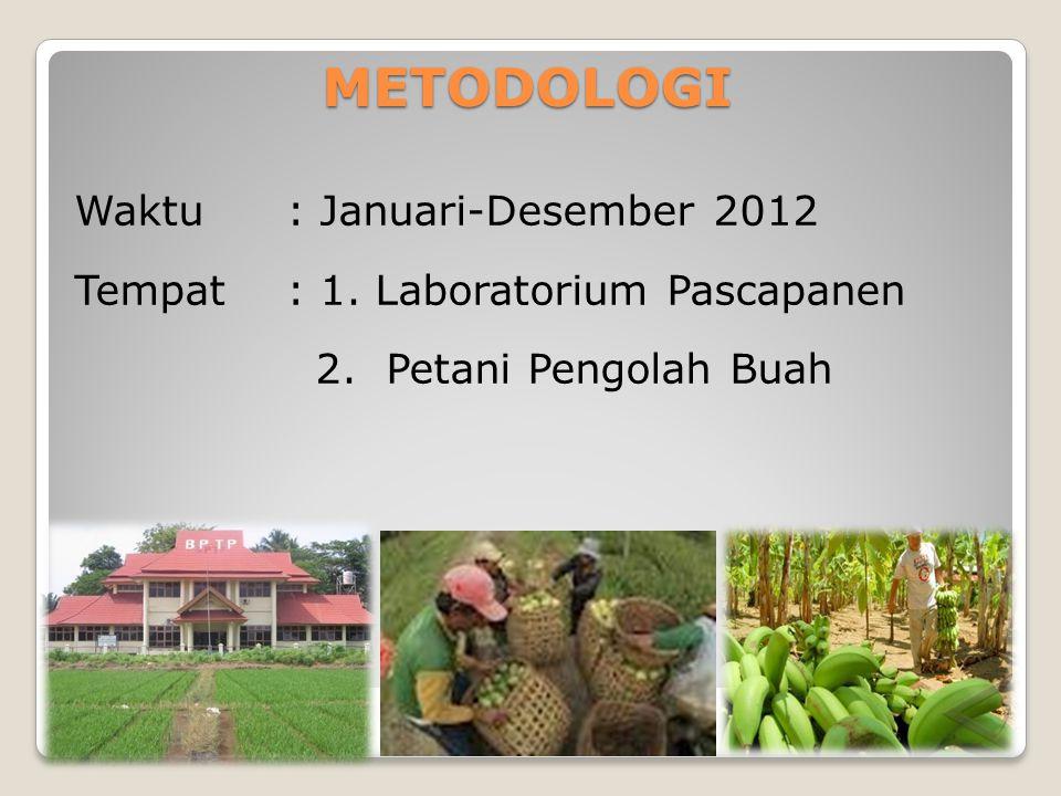 METODOLOGI Waktu : Januari-Desember 2012 Tempat: 1. Laboratorium Pascapanen 2. Petani Pengolah Buah