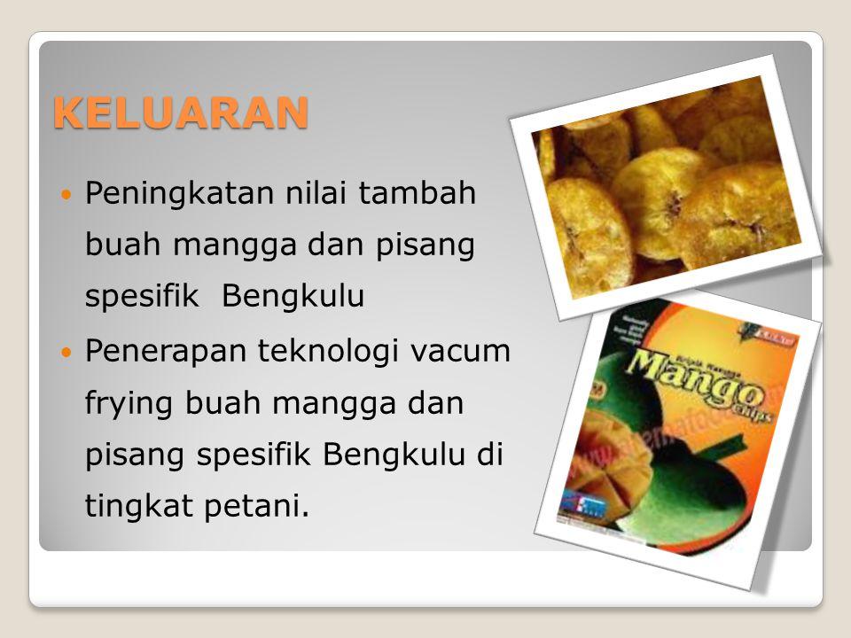 KELUARAN Peningkatan nilai tambah buah mangga dan pisang spesifik Bengkulu Penerapan teknologi vacum frying buah mangga dan pisang spesifik Bengkulu di tingkat petani.