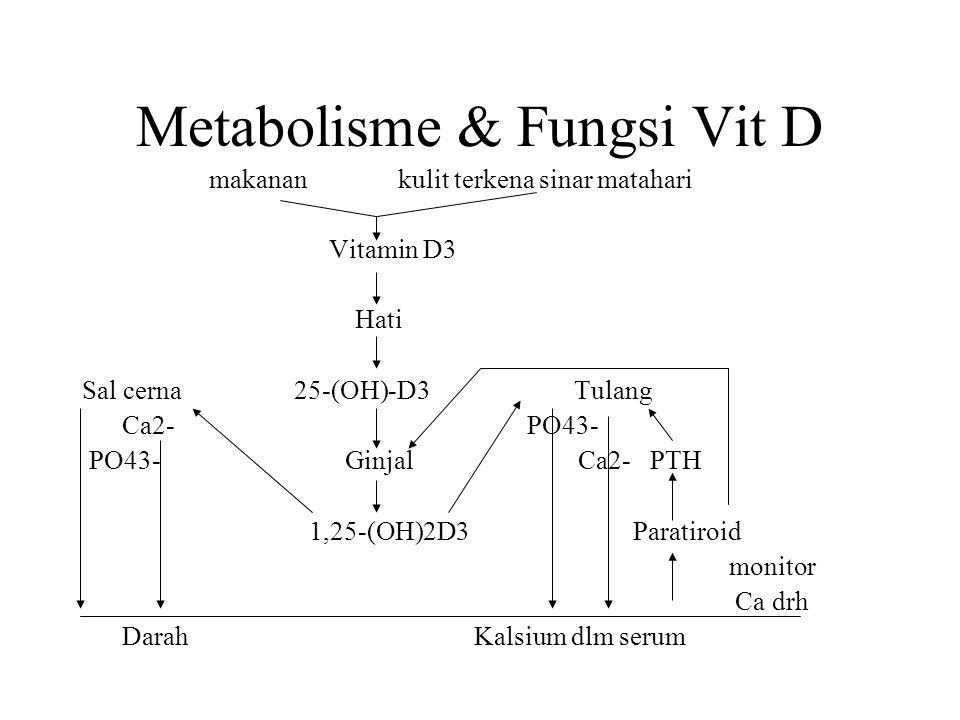 Metabolisme & Fungsi Vit D makanan kulit terkena sinar matahari Vitamin D3 Hati Sal cerna 25-(OH)-D3 Tulang Ca2- PO43- PO43- Ginjal Ca2- PTH 1,25-(OH)