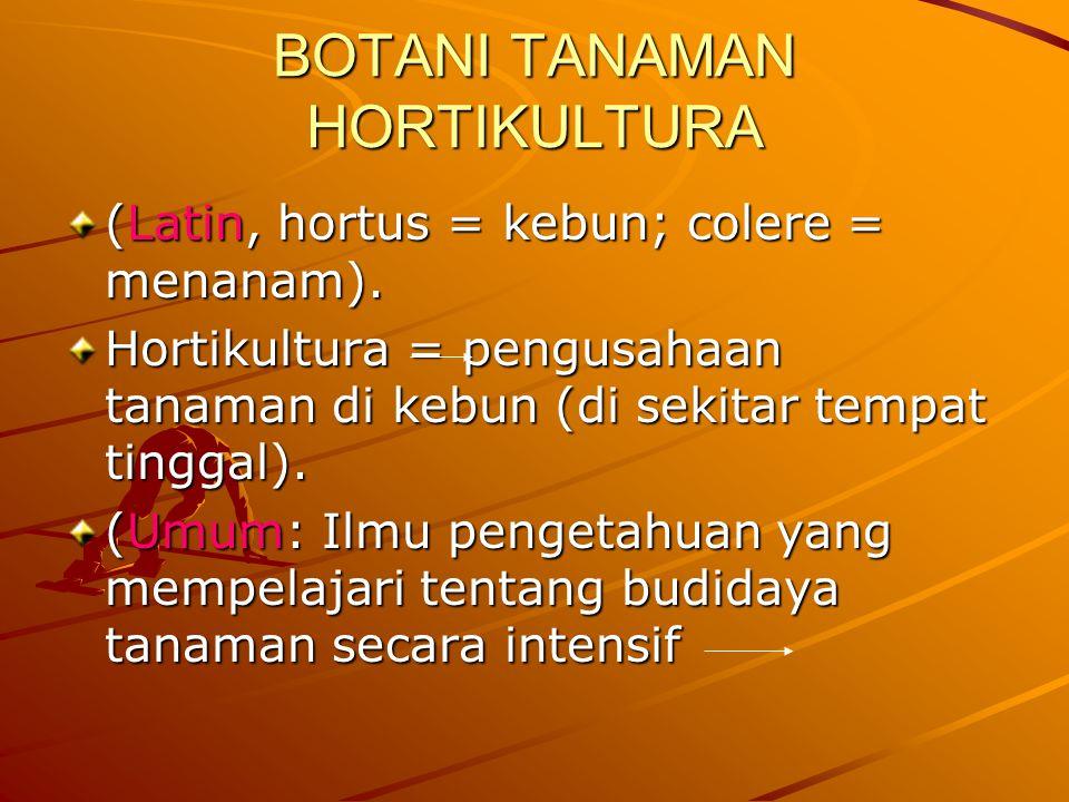 BOTANI TANAMAN HORTIKULTURA (Latin, hortus = kebun; colere = menanam).