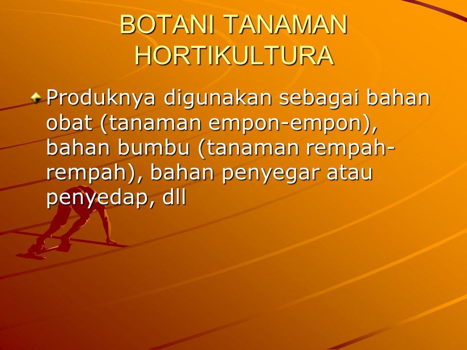 BOTANI TANAMAN HORTIKULTURA Produknya digunakan sebagai bahan obat (tanaman empon-empon), bahan bumbu (tanaman rempah- rempah), bahan penyegar atau penyedap, dll