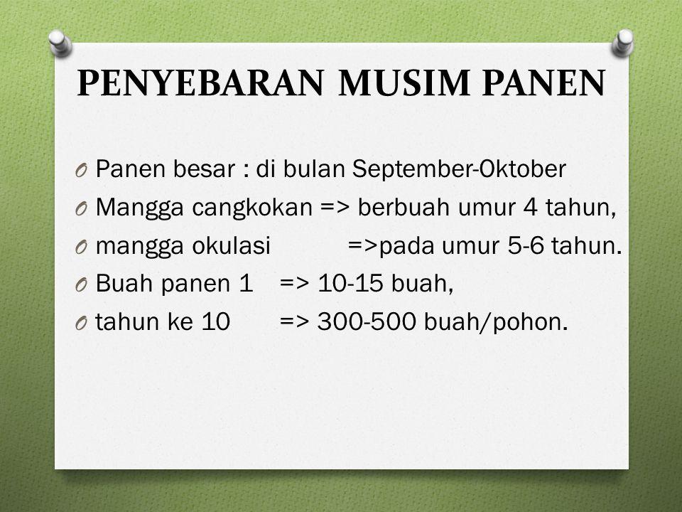 PENYEBARAN MUSIM PANEN O Panen besar : di bulan September-Oktober O Mangga cangkokan => berbuah umur 4 tahun, O mangga okulasi =>pada umur 5-6 tahun.