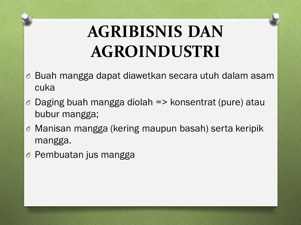AGRIBISNIS DAN AGROINDUSTRI O Buah mangga dapat diawetkan secara utuh dalam asam cuka O Daging buah mangga diolah => konsentrat (pure) atau bubur mangga; O Manisan mangga (kering maupun basah) serta keripik mangga.