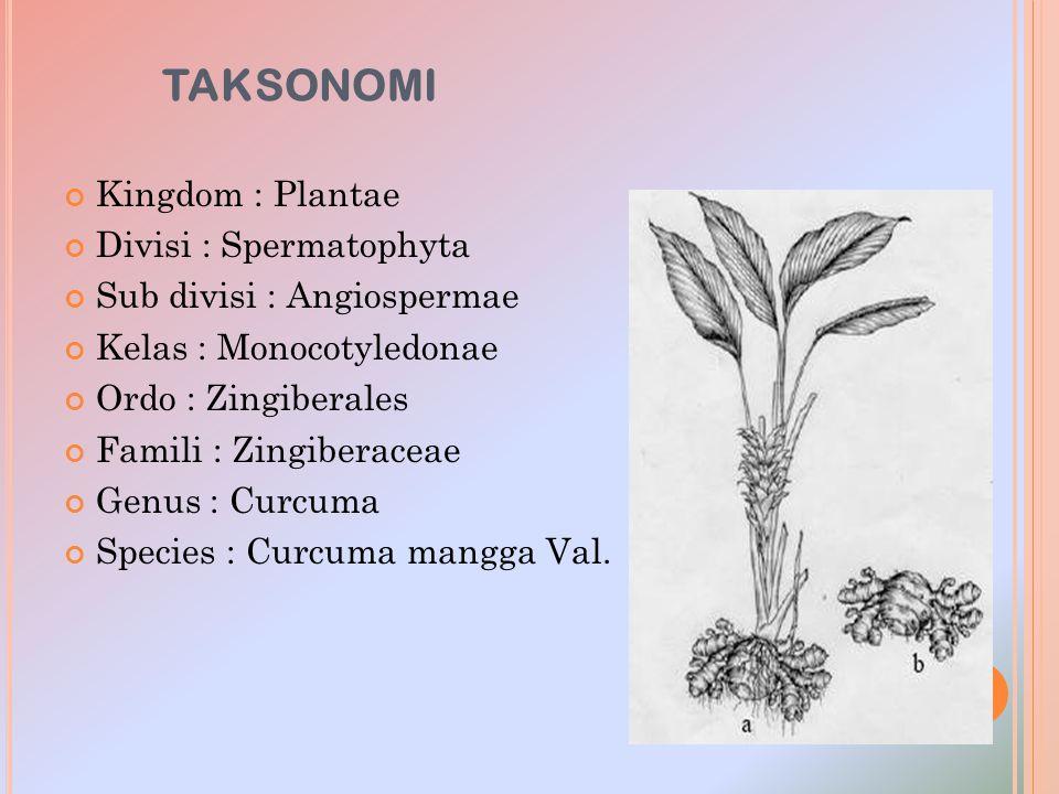 TAKSONOMI Kingdom : Plantae Divisi : Spermatophyta Sub divisi : Angiospermae Kelas : Monocotyledonae Ordo : Zingiberales Famili : Zingiberaceae Genus
