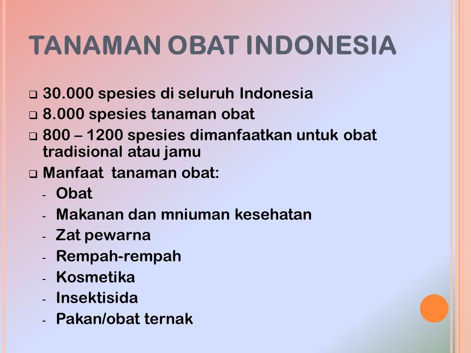 TANAMAN OBAT INDONESIA  30.000 spesies di seluruh Indonesia  8.000 spesies tanaman obat  800 – 1200 spesies dimanfaatkan untuk obat tradisional ata
