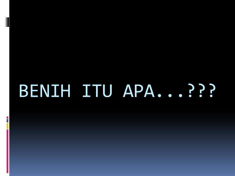 BENIH ITU APA...