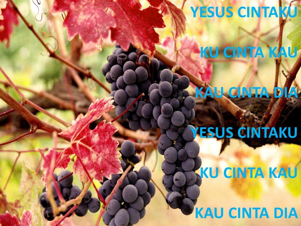 YESUS CINTAKU KU CINTA KAU KAU CINTA DIA YESUS CINTAKU KU CINTA KAU KAU CINTA DIA