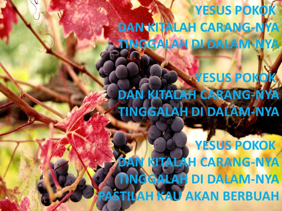 YESUS POKOK DAN KITALAH CARANG-NYA TINGGALAH DI DALAM-NYA YESUS POKOK DAN KITALAH CARANG-NYA TINGGALAH DI DALAM-NYA YESUS POKOK DAN KITALAH CARANG-NYA TINGGALAH DI DALAM-NYA PASTILAH KAU AKAN BERBUAH
