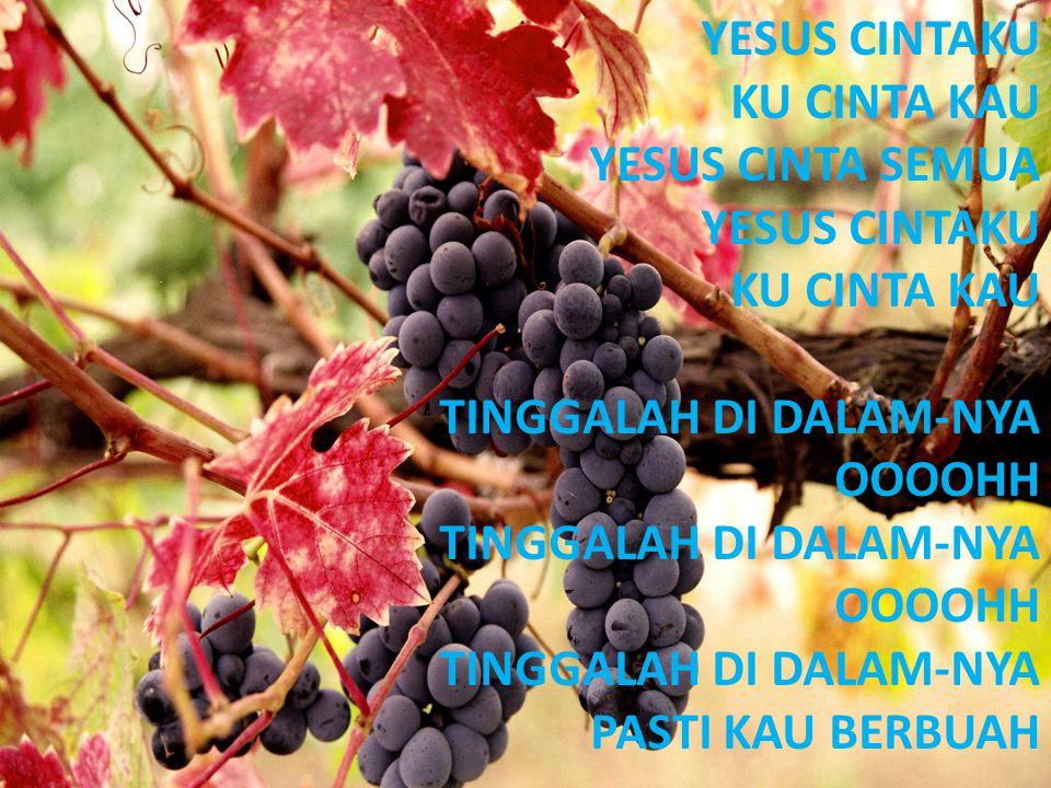 YESUS CINTAKU KU CINTA KAU YESUS CINTA SEMUA YESUS CINTAKU KU CINTA KAU TINGGALAH DI DALAM-NYA OOOOHH TINGGALAH DI DALAM-NYA OOOOHH TINGGALAH DI DALAM-NYA PASTI KAU BERBUAH