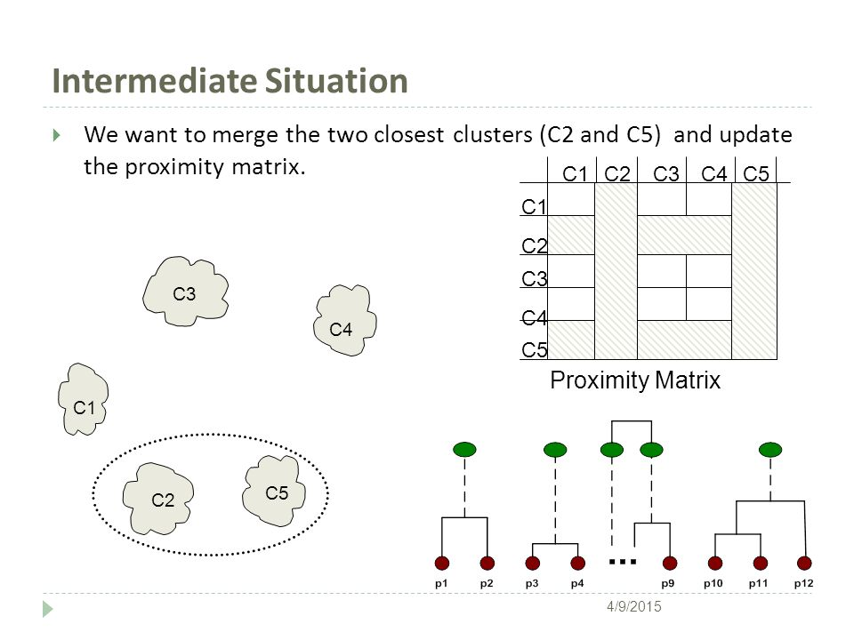 Intermediate Situation  We want to merge the two closest clusters (C2 and C5) and update the proximity matrix. C1 C4 C2 C5 C3 C2C1 C3 C5 C4 C2 C3C4C5
