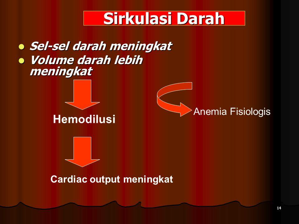 Sirkulasi Darah Sel-sel darah meningkat Sel-sel darah meningkat Volume darah lebih meningkat Volume darah lebih meningkat Hemodilusi Anemia Fisiologis Cardiac output meningkat 14