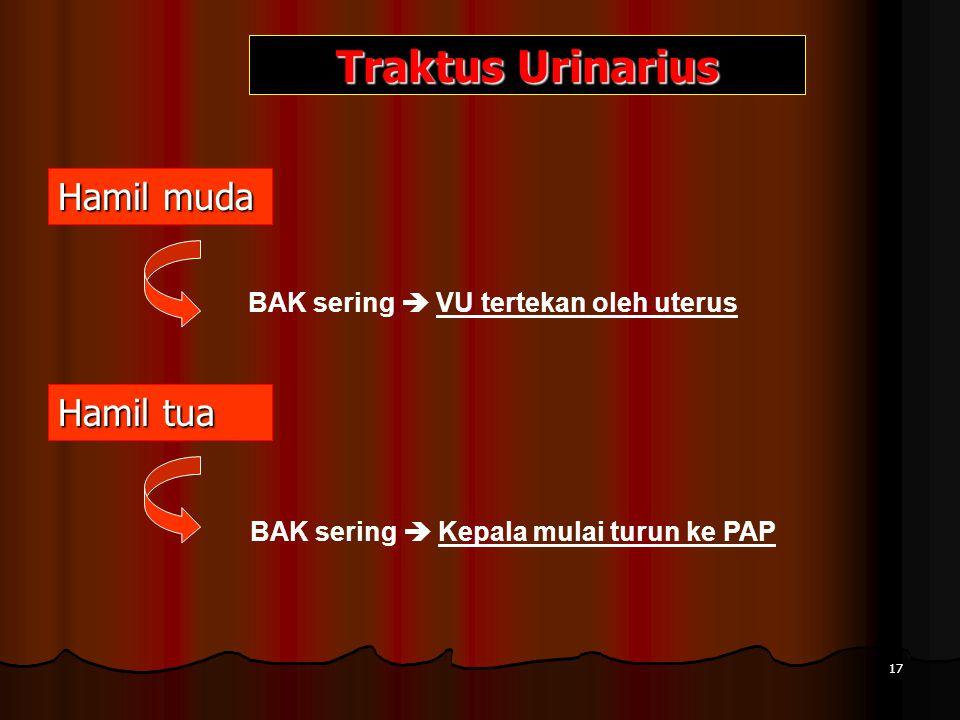 Hamil muda Traktus Urinarius BAK sering  VU tertekan oleh uterus Hamil tua BAK sering  Kepala mulai turun ke PAP 17