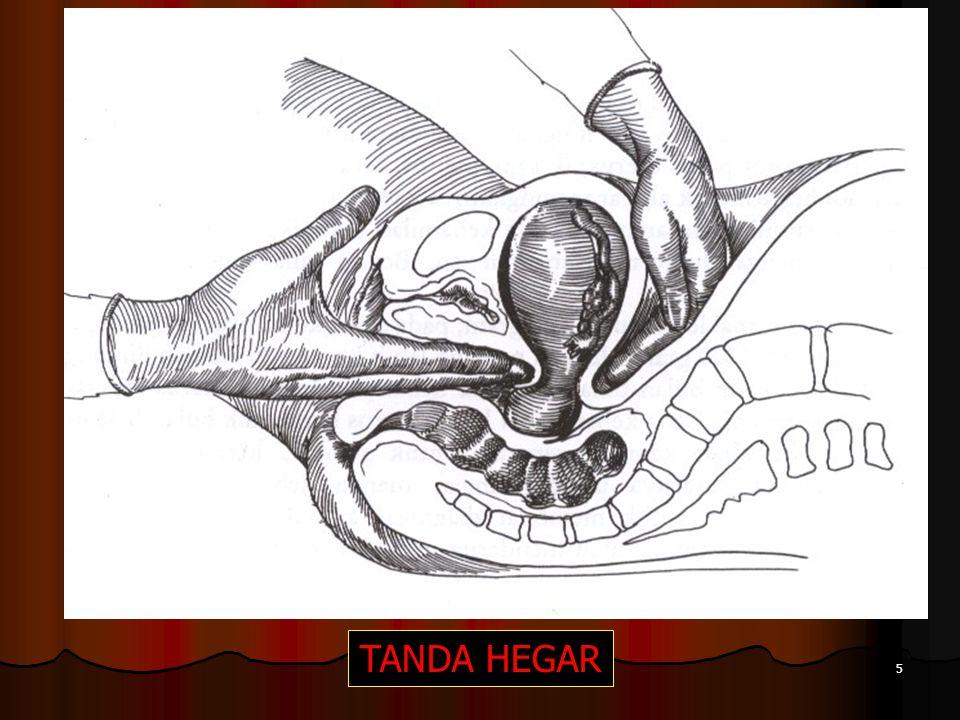 TANDA HEGAR 5
