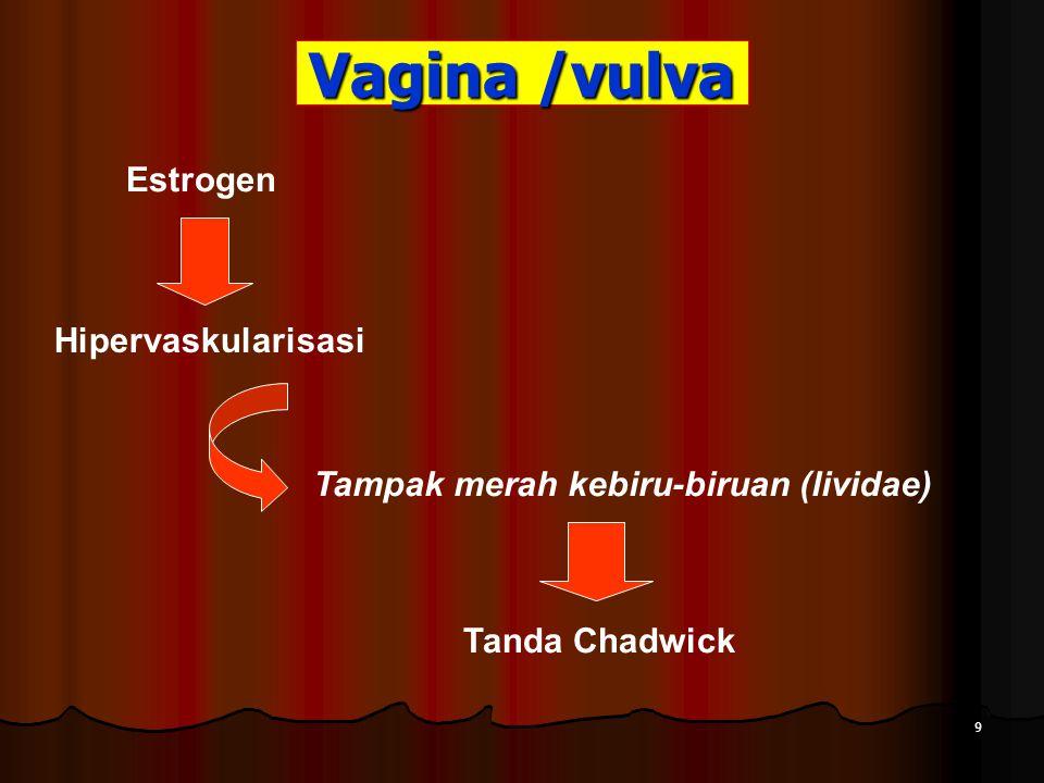 Vagina /vulva Estrogen Hipervaskularisasi Tampak merah kebiru-biruan (lividae) Tanda Chadwick 9