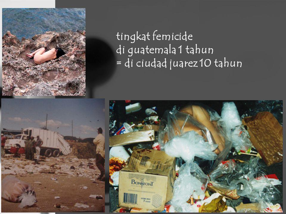 tingkat femicide di guatemala 1 tahun = di ciudad juarez 10 tahun