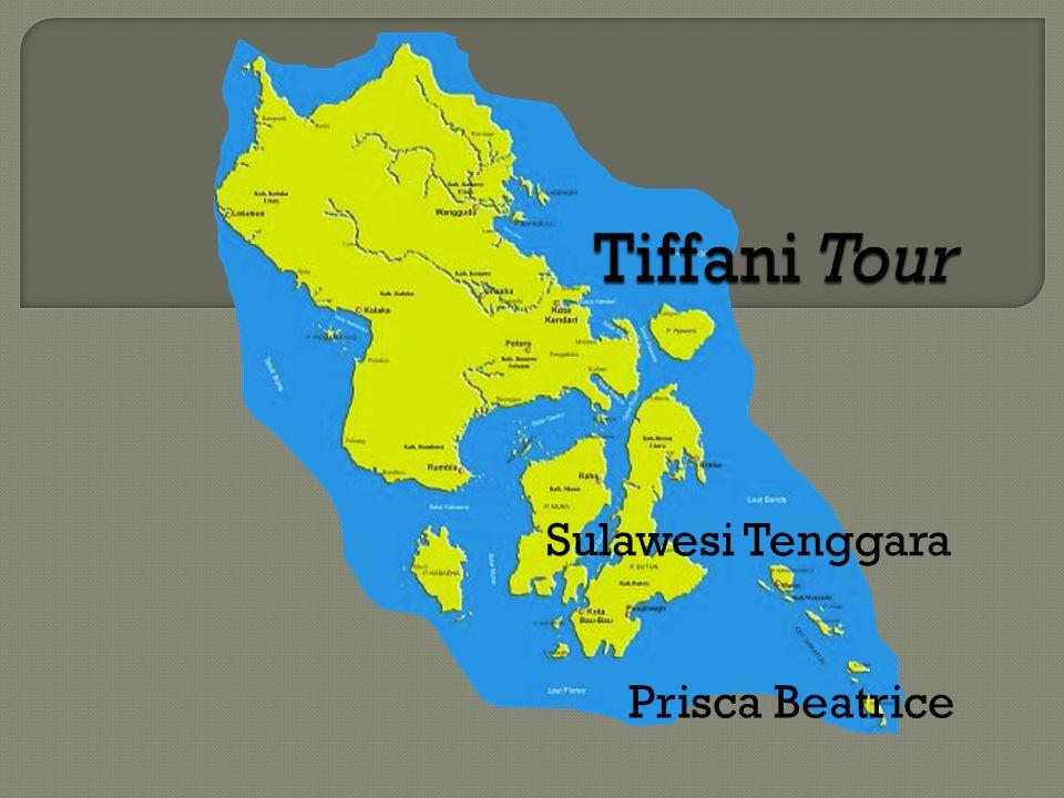 Prisca Beatrice Sulawesi Tenggara