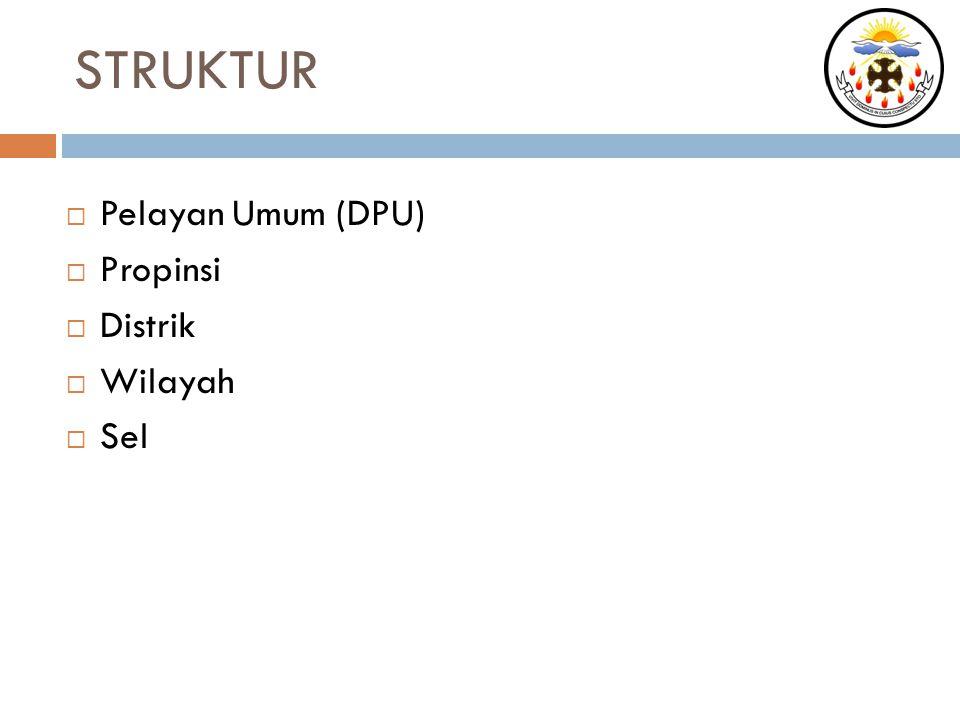 STRUKTUR  Pelayan Umum (DPU)  Propinsi  Distrik  Wilayah  Sel