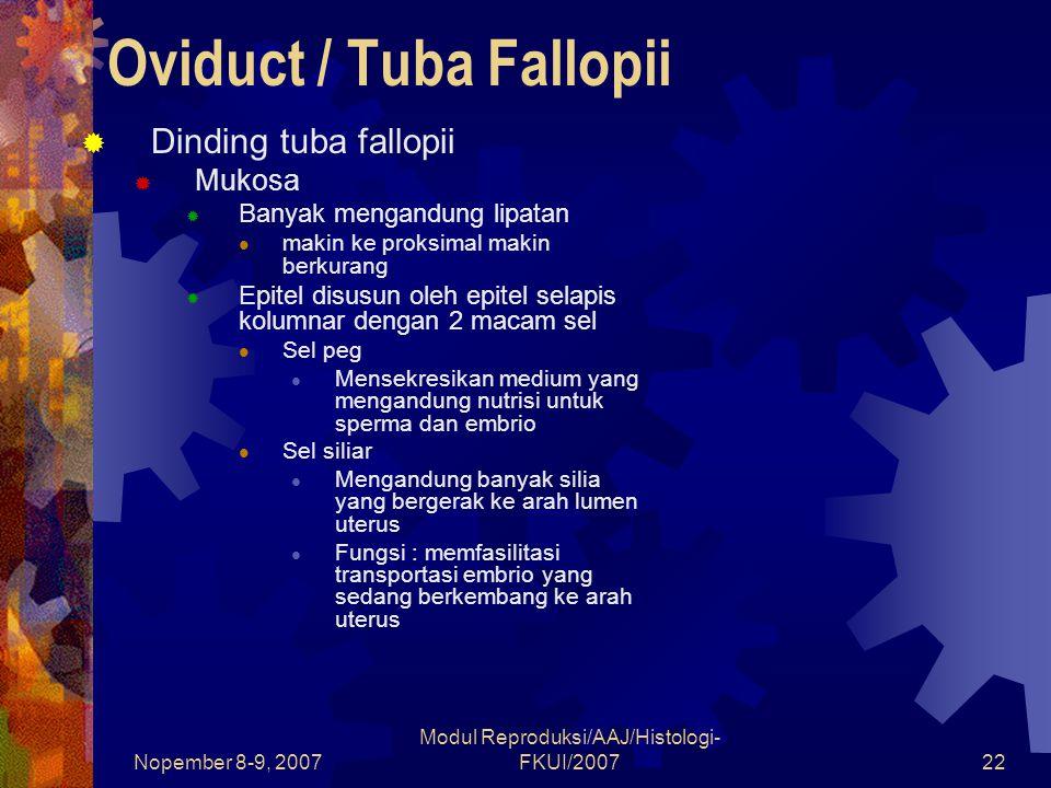 Nopember 8-9, 2007 Modul Reproduksi/AAJ/Histologi- FKUI/200723 Oviduct / Tuba Fallopii  Dinding tuba fallopii  Lamina Propria  Terdiri atas jaringan ikat yang mengandung serat retikular, fibroblas, sel mast dan limfosit